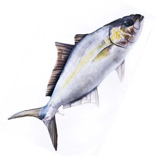 Cuscino d'arredo Pesce Ricciola