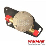 Pompa acqua mare Yanmar 3YM30AE
