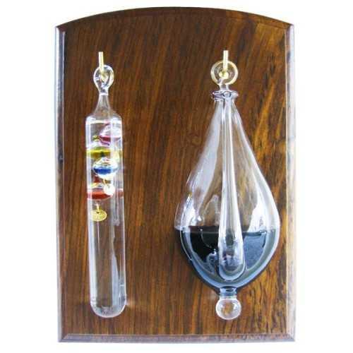 Barometro ad acqua e termometro di Galileo